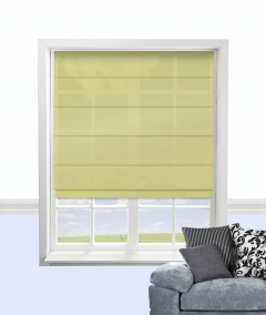 citadel roman blind apple