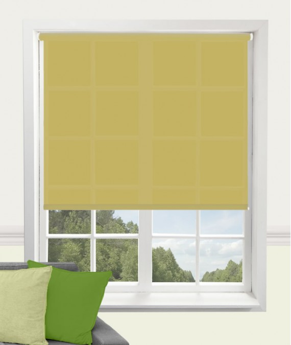 Roller Blind by Carnival in Spring Green